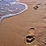 Strand im Juli, Reisewetter - © Photocase