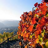 Impression im Oktober, Reisewetter - © KlausM / Pixelio.de